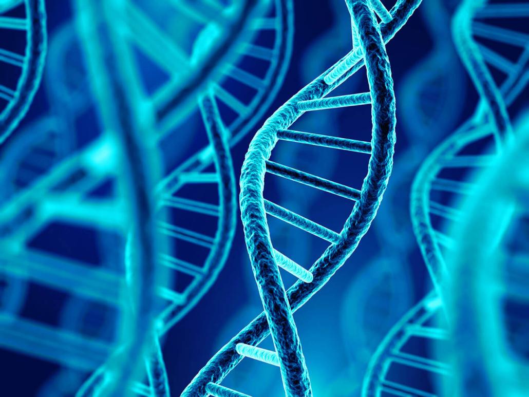 para qué sirve la epigenética
